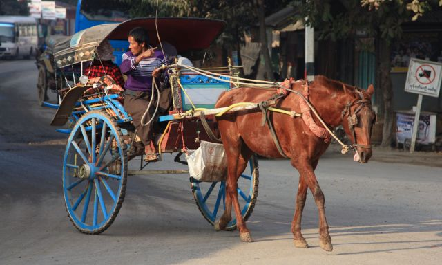 Horse Cart Ride in Bagan