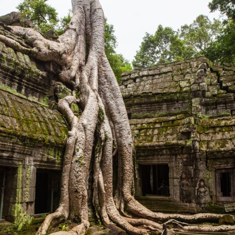 Now is the Best Time to Travel to Cambodia
